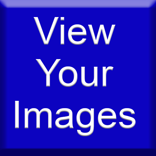 View your images